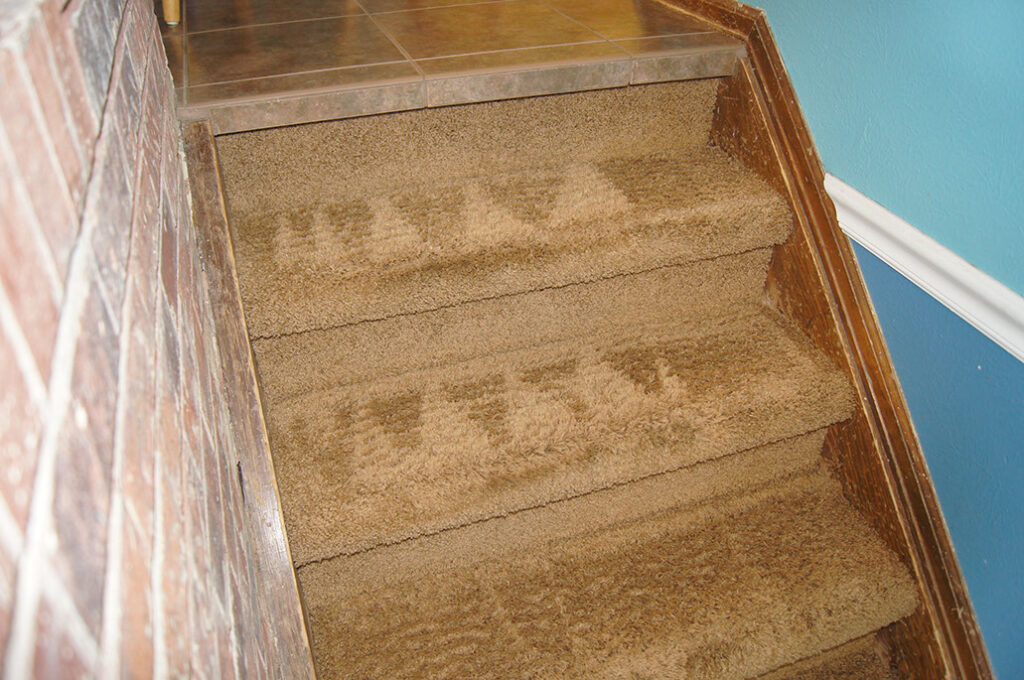 An Image of freshly cleaned stairs.